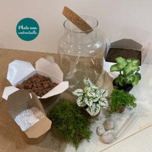 echappee-vegetale-terrarium-diy
